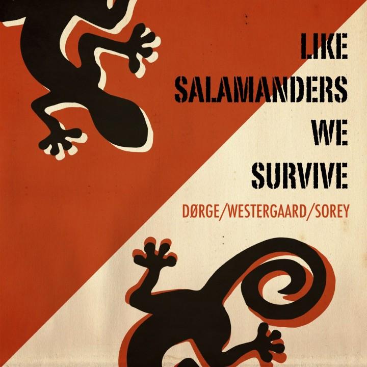 CD-Cover-Like salamnders_forsiden_TW
