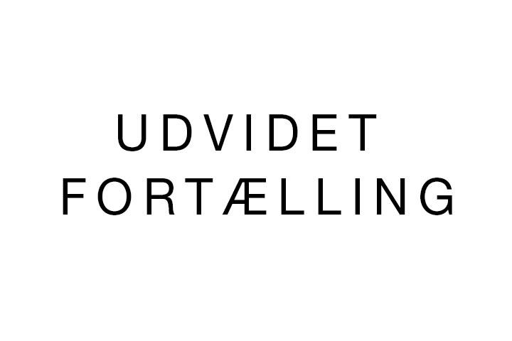 TW-portfolio-UdvidetFortaelling-1