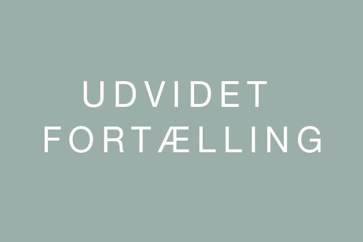 TW-portfolio-UdvidetFortaelling-2